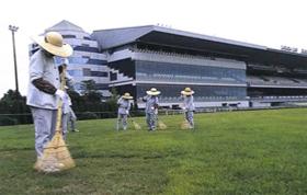中京競馬場/保守管理作業