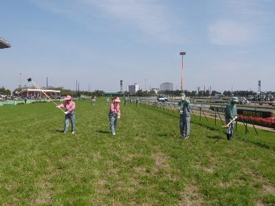 中京競馬場内保守管理作業:競馬開催作業