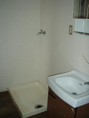 洗面脱衣スペースのクリーニング